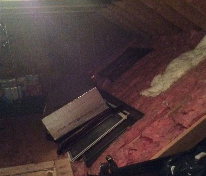Mold Infestation in Lawrence, MA