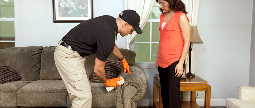Lawrence, MA carpet upholstery cleaning